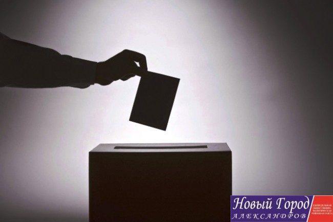 Выборы в Струнино