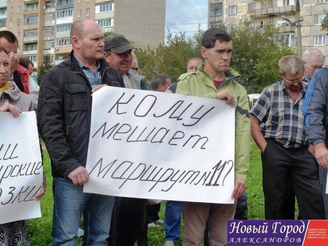 Митинг в Александрове