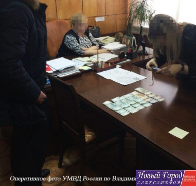 Руководителя  Карабаново Владимирской области расположили  под домашний арест